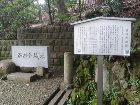 石神井公園を散策しながら自然を楽しもう!