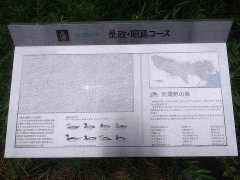 武蔵野の路 4.是政・昭島コース
