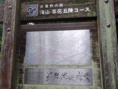 武蔵野の路 5.滝山・草花丘陵コース