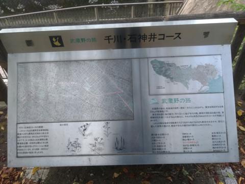 武蔵野の路 9.千川・石神井コース