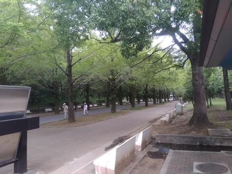 武蔵野の路 10.光が丘・赤塚コース