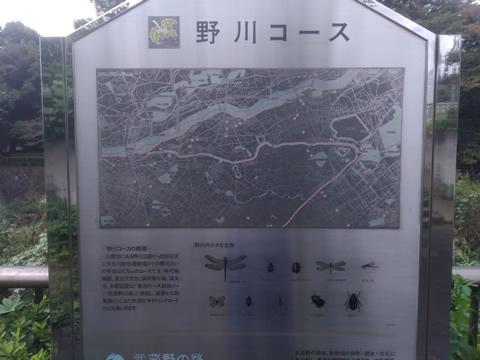 武蔵野の路 17.野川コース