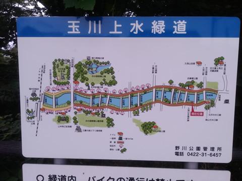 武蔵野の路 18.玉川上水コース
