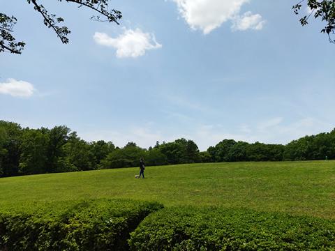 府中市散歩 キャンパスの緑と府中の森をめぐる