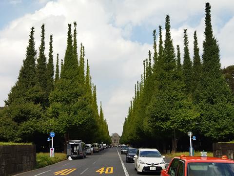 駅からハイキング 四ツ谷駅発着 神宮外苑銀杏並木